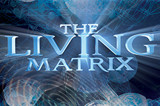 illustration de l'article The Living Matrix