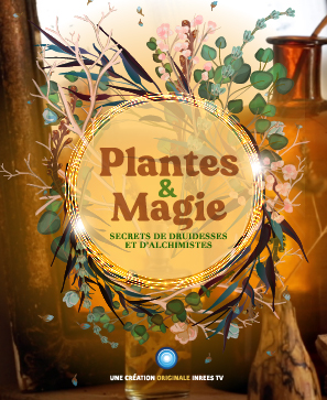 Plantes & magie : secret de druidesses et d'alchimistes