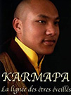 illustration de film Karmapa