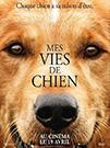 illustration de film Mes vies de chien