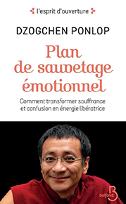 illustration de livre Plan de sauvetage émotionnel