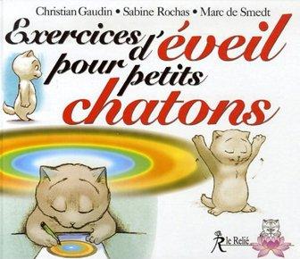 illustration de livre Exercices d'éveil pour petits chatons