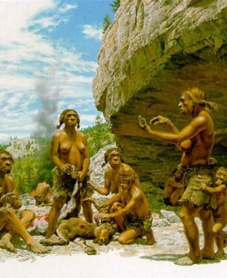 L'homme de Néandertal se soignait-il déjà par les plantes ?