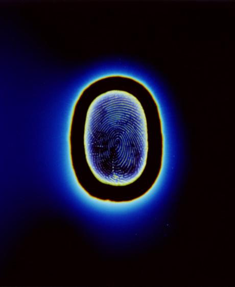 Serions-nous dotés d'un esprit quantique ?