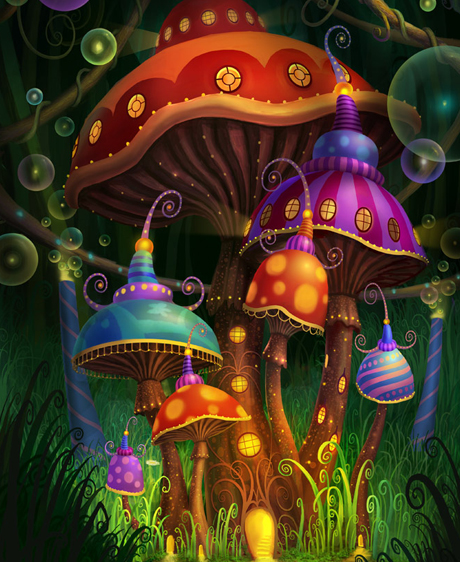 Champignons magiques, une redécouverte