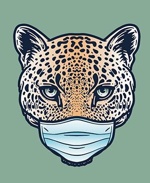 Du coronavirus au contrat animal