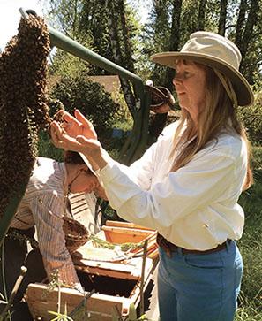 Dialogue avec les abeilles