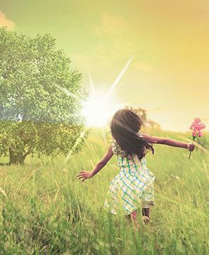 Miracle au cœur d'un arbre