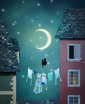 La nuit, tous les chats sont gris