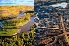 illustration de l'article Respecter la Nature : une loi contre les crimes environnementaux ?