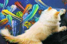 illustration de l'article Quand les animaux font de l'art