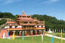 illustration de l'article Des experts réunis pour échanger sur la médecine et le bouddhisme