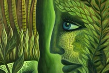 illustration de l'article Plantes, hallucinations et hallucinogènes