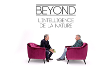 illustration de l'article L'intelligence de la nature - Beyond S4E3